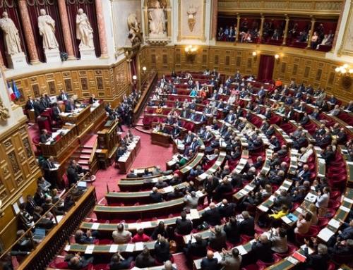 Être la principale force d'opposition à la droite sénatoriale et au gouvernement.